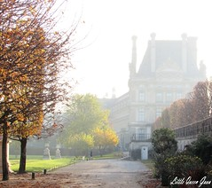 Golden Hour And Misty Landscape (Little Queen Gaou) Tags: forest bois wood forêt garden jardin tuileries paris capitale france discovery découverte travel voyage november novembre season saison automne autumn hiver winter feuilles leaves architecture louvre museum musée quais water seine mist brume brouillard morning matin photography photographie inspiration paysage landscape triumphal arch