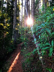 Table Rock Wilderness (BLMOregon) Tags: tablerockwilderness hiking nature pacificnorthwest molalla