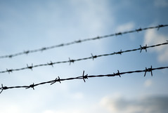 L1023036c (haru__q) Tags: leica leicam8 minolta m8 rokkor barbed wire barbedwire 有刺鉄線
