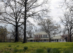 The main plantation home on the Wrayswood property has been in the Curtis family since 1948. The plantation was named for the original owners, the Wray brothers.