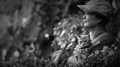 _DSC5036a Angenieux 125 (barryleung28) Tags: kitten 子猫 小猫 고양이 새끼 chaton котенок gatito kätzchen ลูกแมว con mèo gattino adorable cute 可愛い 可愛い猫 可愛 carina mignonne mignonnerie 귀엽다 น่ารัก niedlich cat