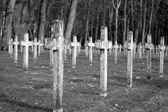 Drenthe (The Netherlands) - Veenhuizen - Graveyard - 17 (Björn_Roose) Tags: bjornroose björnroose veenhuizen drenthe nederland niederlände netherlands paysbas graveyard kerkhof