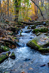Neshaminy Creek (Beangrau12) Tags: neshaminycreek tylerstatepark bucksco pennsylvania flow water autumncolors colorfullandscape