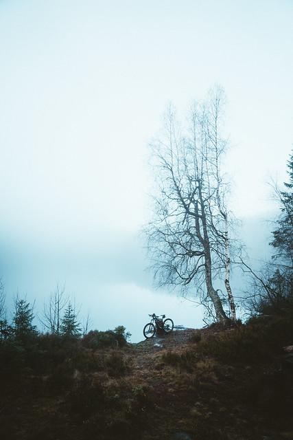 Bike by the lake