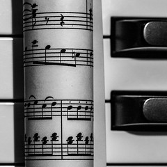 Dots and Stripes (kurjuz) Tags: dotsandstripes macromondays blackandwhite musicnotation pianokeys staves