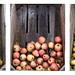 Appels en peren / apples and pears