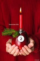December 9th (sch.o.n) Tags: