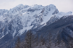 Cold days, warm heart (LB1415) Tags: winter december snow tree mountain ridge arete pentax k200d alps naturalcolors nature landscape outdoor forest walking slovenia julianalps europe lb1415 allrightsreserved interesting mountains zima