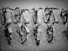Mainfränkische Rarität (Maquarius) Tags: fahrräder schnee winter würzburg mainfranken unterfranken franken