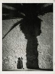 Palm shade (prima457) Tags: palm shadow alternative print morocco man oilprint wall