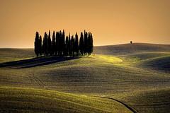 Classic Tuscany!!! (Enzo Ghignoni) Tags: cipressi cielo campo collina erba luce tuscany italy