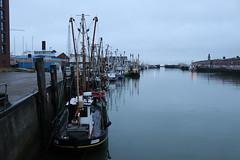 fishing boats in harbor (Phototalica) Tags: boats fishingboats harbor harbour cuxhaven fisheryharbor germany northcoast