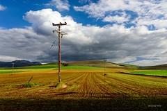 Poles (alexring) Tags: mouriki viotia greece poles meadow clouds nikon d750 alexring