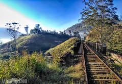 Kotagala Railway bridge (Ashan wijekoon) Tags: sri lanka kotagala railway upcountry tea plantation bridge morning