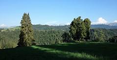 DSC05659 (ursrüegsegger) Tags: linden juli august getreideernte bauernhöfe landschaft regenbogen
