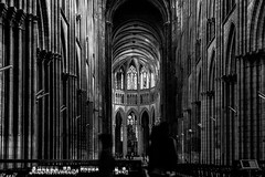 Intérieur d'église habitée - II/III : l'antre organique, fossile de pierre... (Stéphane Désiré) Tags: cathédrale pierre fossile jonas noiretblanc monochrome rouen nef architecture