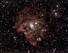 monkeyHead (macsmithuk) Tags: ngc2174 monkeyheadnebula astrophotography haddington eastlothian uk telescope