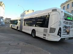 AUTOBUS ARTICULE (marsupilami92) Tags: france frankreich sudouest nouvelleaquitaine poitoucharentes 16 charente angoulême autobus stga