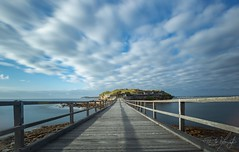 Boardwalk (Phil Naumoski Photography) Tags: longexposure print wallpaper landscapephotography landscape tide deep water misty mist highlight sharp details detail laperouse bay botany sydney nsw australia flourish grassy greenery grass patch shadows green blue motion patchy cloudcover clouds weathered wood boardwalk bareisland island sunrise wharf bluehour seashore calm smoothwater quay shoreline shore pier jetty waterfront mkiii 5d canon