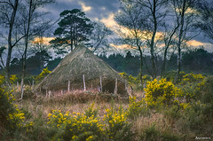 Throwback. (_Anathemus_) Tags: heath house dorset england nikon d750 countryside ancient past times roundhouse history uk