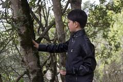 KLoE_img_9941 (kloe_chan) Tags: joaquin miller park hike oakland berkeley bay area family trees