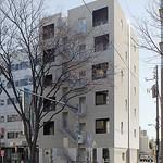 ケヤキの前の集合住宅の写真