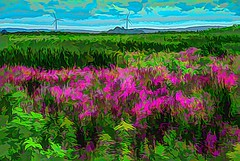 Wild Flowers (Rusty Russ) Tags: pink wild flowers wind turbine green parker river wildlife refuge newburyport colorful day digital window flickr country bright happy colour eos scenic america world sunset beach water sky red nature blue white tree art light sun cloud park landscape summer city yellow people old new photoshop google bing yahoo stumbleupon getty national geographic creative composite manipulation hue pinterest blog twitter comons wiki pixel artistic topaz filter on1 sunshine image reddit tinder russ seidel facebook