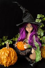Iyeri (tjassi) Tags: bjd abjd asian ball jointed doll msd harucasting maji medium tan halloween pumpkins