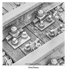 Strong Company (Michael J. Woerner) Tags: eisenbahn gleis bahngleis schiene eisenbahnschiene schraube mutter klammer befestigung bahnschwelle holz maserung verschraubt befestigt fest zusammenhalt zusammenarbeit team zusammen gruppe gruppenarbeit basis railroad track railroadtrack rail bolt nut clamp fastening railwaysleeper wood grain screwed fastened solid cohesion cooperation together group groupwork base