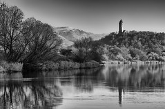 Wallace Monument (Simon Wootton) Tags: river water riverforth nature autumn sunshine lowlight blueskies reflections trees monument history wallacemonument williamwallace freedom independence stirling stirlingshire scotland