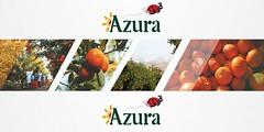 Campagne de Recrutement Azura sur tout le Maroc (18 Profils) (dreamjobma) Tags: 122018 a la une acheteur agadir assistante de direction azura maroc emploi et recrutement casablanca finance comptabilité import export logistique supply chain rabat responsable rh ressources humaines rse santé sécurité hse recrute