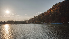 Katsuragawa River (bacon.dumpling) Tags: arashiyama autumn fallfoliage fujifilmxpro2 fujinonxf16mmf14rwr japan katsuragawariver koyo kyoto leafchangingseason