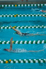142A1421 (Roy8236) Tags: gmu american old dominion swim dive
