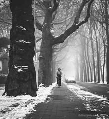 First snowfall (The Rolling Spoke) Tags: bike bicycle bici bicicleta bicicletta bisiklet fiets fahrrad velo street streetphotography blackandwhite bnw morning monochrome mono snow fog meloncholy january winter urban canon eos5d amsterdam