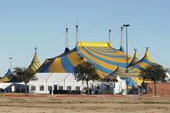 Mega tent (MoparMadman63) Tags: circus entertainment big large tent outdoors pattern yellow blue sky canvas material structure suburb grandprairietx texas lonestarpark
