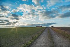 evening field (karina Novakova) Tags: sun evening leading leadinglines sky skyscapes skyscape cloud clouds cloudscape barn hay field landscape landscapes