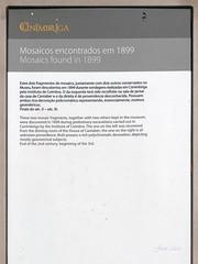 Yacimiento. Mosaicos (Conimbriga, Portugal) (Juan Alcor) Tags: yacimiento mosaico conimbriga portugal placa ruinas romanas romano