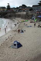IMG_10924 (mudsharkalex) Tags: california pacificgrove pacificgroveca loverspointpark loverspointbeach beach