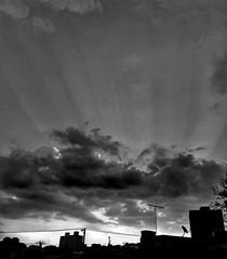 céu - noite - entardecer - nuvens - prédio - cidade |  sky - evening - dusk - clouds - building - city  / São Paulo/SP - Brasil  | instagram @luciano_cres (Luciano9358) Tags: céu noite entardecer nuvens prédio cidade sky evening dusk clouds building city pretoebranco blackandwhite bw fotografia fotografando saopaulo sp sampa brasil photography photographing monocromatico monochrome brazil photo saopaulocity archsp splovers sp4you spdagaroa cidadedagaroa