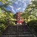 Chūrei-tō Pagoda - Fujiyoshida (Japan)