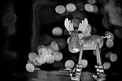 What? (Phancurio) Tags: fastlens monochrome christmas reindeer