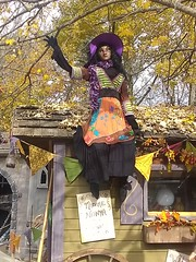 Storybook Hollow (PhotoJester40) Tags: outdoors outside witch female halloween colorful fall sittinguphigh amdphotographer