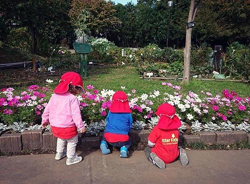 Best friends 仲良し #tokyo #kindergarten #preschool #daycare #park #shibakoen #flowers #garden #東京 #幼稚園 #保育園 #ガーデン #お花 #芝公園