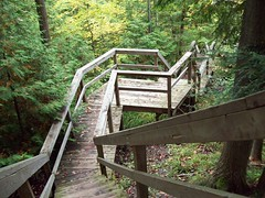 Into the Ravine (dieter1.freier1) Tags: ravine staircase down wooden valley greenery trees walk steep