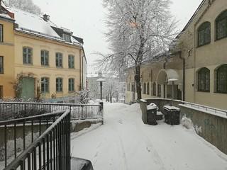 Oslo 18 febbraio 2018 (13)