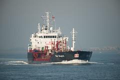 Stolt Seagull_DVL9788 (larry_antwerp) Tags: nederland netherlands walsoorden schip ship vessel 船 船舶 אונייה जलयान 선박 کشتی سفينة schelde 斯海尔德河 スヘルデ川 스헬더 강 رود شلده سخيلده tanker 液貨船 タンカー ناقلة stolt stoltseagull 9125645