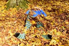 Autumn - pantyhose and leotard (wetmuddy) Tags: outdoor fun forest autumn herbst wald leotard unitard pantyhose gymanstik gymnastikanzug lycra spandex medias strumpfhose tights legs leggings gimnasia