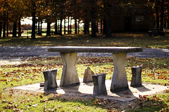 A Nice Fall Picnic? (JoshGrube) Tags: fall picnic autumn outdoors outside beautiful nature trees sunny broken destroyed vandalism stone leaves