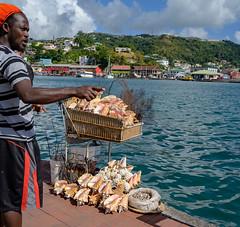 The Shell Man (david feld) Tags: water shells person vendor grenada caribbean sky clouds harbor