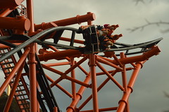Going Upside Down on Mumbo Jumbo (CoasterMadMatt) Tags: flamingoland2018 flaminglandresort2018 flamingoland flamingolandresort flamingo land resort themepark amusementpark theme amusement park parks englishthemeparks themeparksinengland mumbojumbo mumbo jumbo rollercoaster rollercoasters roller coaster coasters englishrollercoasters rollercoastersinengland ride rides attraction attractions kirbymisperton kirby misperton yorkshire yorks yorkshirehumber yorkshireandhumber england britain greatbritain great gb unitedkingdom united kingdom uk europe october2018 autumn2018 october autumn 2018 coastermadmattphotography coastermadmatt photos photographs photography nikond3200